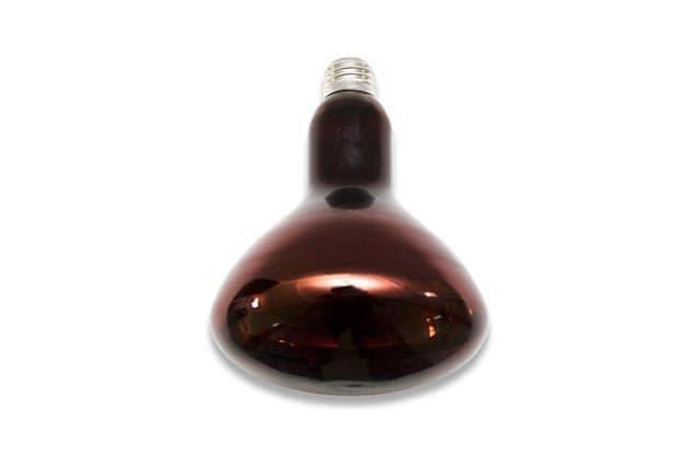 Как выбрать инфракрасную лампу?
