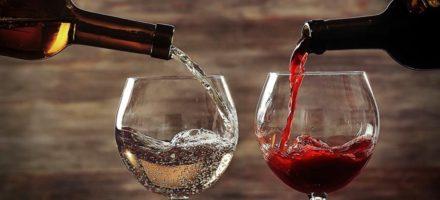 Винный шкаф Wollmer C230 — секрет правильного хранения вина