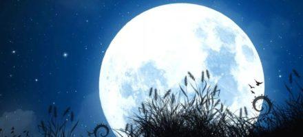 Как выглядит Луна