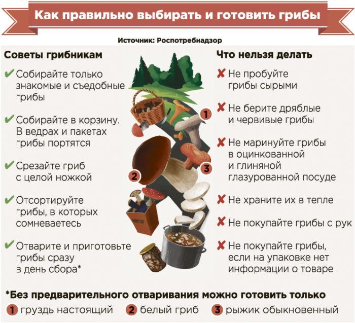 Где растут синеножки грибы