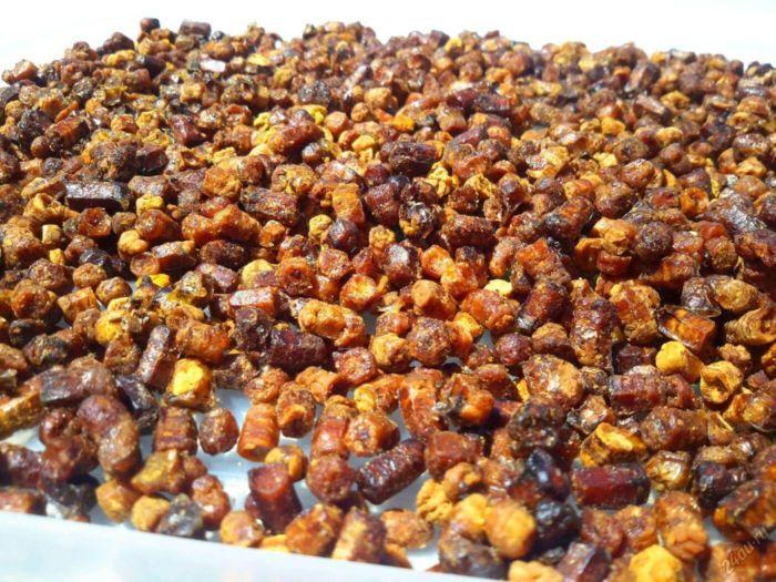 Перга пчелиная — полезные свойства, как принимать