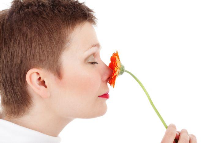 Как чувствуется вкус и запах