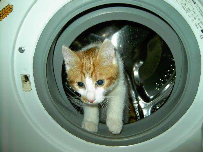 Как почистить стиральную машину часть 2
