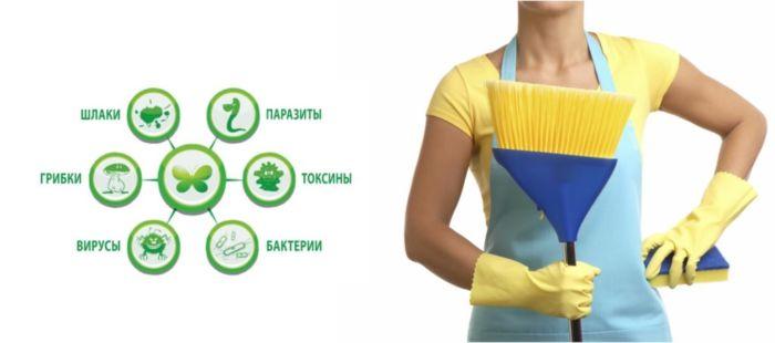 Как почистить организм от шлаков и токсинов