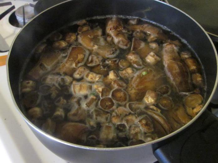 Сколько нужно варить грибы