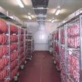 Климатические камеры Mauting для пищевой промышленности: все преимущества в одном устройстве