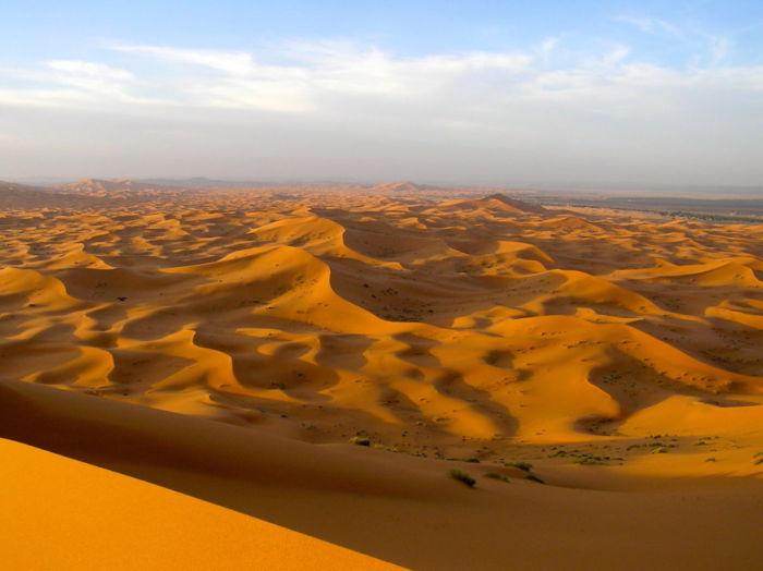 Где находится пустыня Сахара