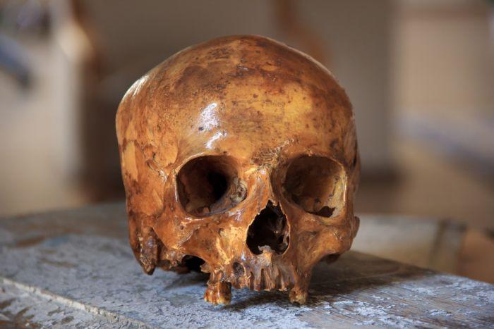 Что такое череп часть 2