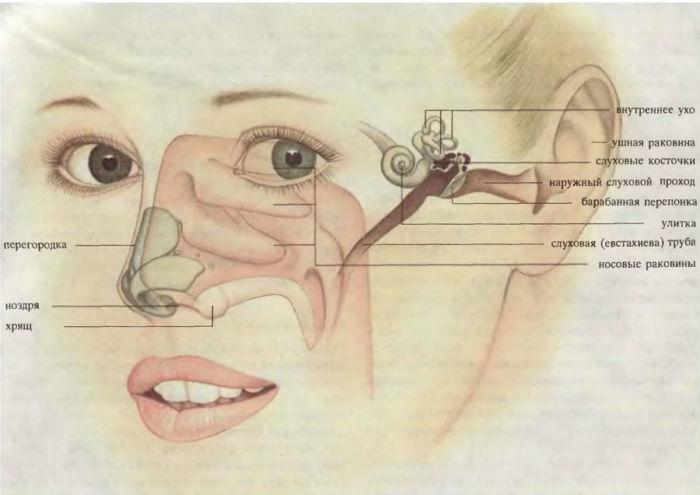 Что делать, если ухо заложило