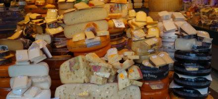 Где купить закваску для сыра